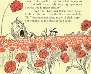 Book Review: The Wonderful Wizard of Oz by L. Frank Baum