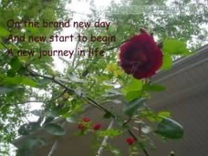 ... New Day And New Start To Begin A New Journey In Life-Facebook Quote