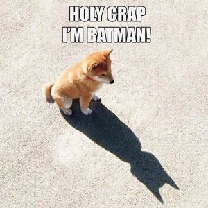 HOLY CRAP I'M BATMAN!