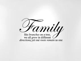 Stencils Family Like Branches on a Tree... Wall Decal Sticker Quote ...