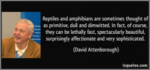 ... surprisingly affectionate and very sophisticated. - David Attenborough