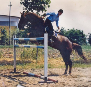 Source: http://www.oughtonlimited.com/blog/show-jumping Like