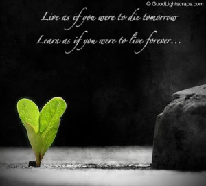 life quotes (38)