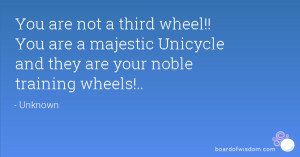 You are not a third wheel!! You are a majestic Unicycle and they are ...