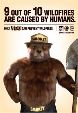 What did they do to Smokey the Bear? # 1