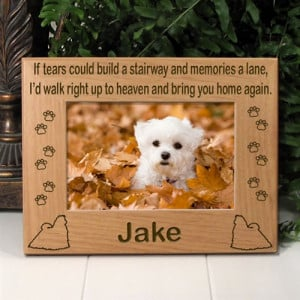 Pet Memorial Frames Cat Gifts