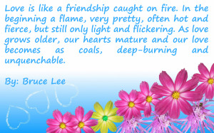 Beautiful Quotes for love | Love Is like a Friendship Caught on Fire