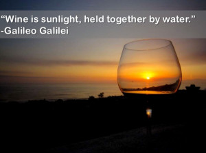 Wine is sunlight held together by water – Galileo Galilei.