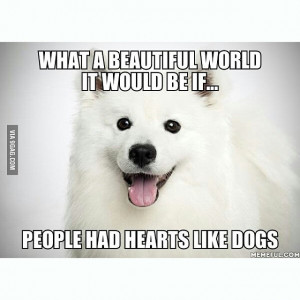 mpi quotes 9gag dogs quote no comments
