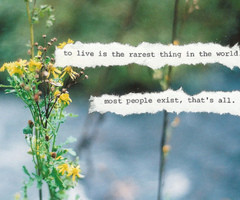 in collection Inspirational Quotes about Beauty Individuality