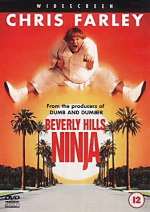 beverly hills ninja quotes quotesgram