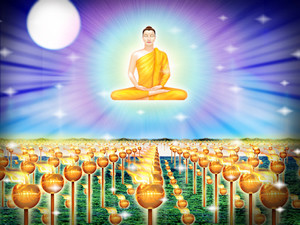 Let's Meditate on Vesak DayThe commemoration to the Lord Buddha and ...