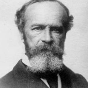 Best William James Quotes Quotations