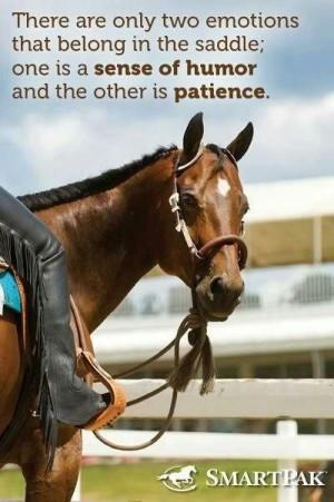 Patience & a sense of humor