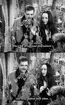 love Halloween Gomez Addams Morticia Addams Addams Family Morticia ...
