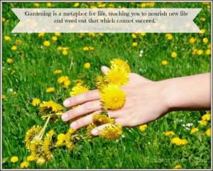 Gardening is a metaphor for life, teaching you to nourish new life and ...