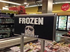 Grumpy Cat - Frozen