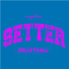 Volleyball Setter Quotes Tumblr Setter