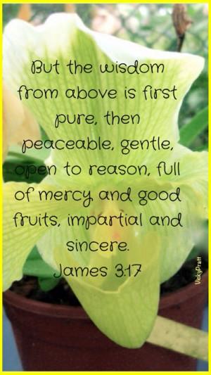 ... Bible, 3 17 Wisdom, Christian Faith, James 317, Bible Ver, James 3 17