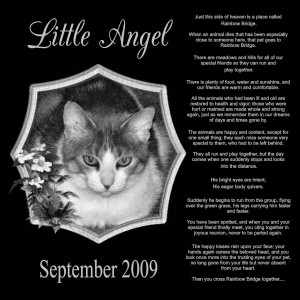 Pet Memorial Sayings Quotes Signscene