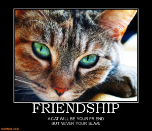 friendship-cat-friend-animal-slave-funny-demotivational-posters ...