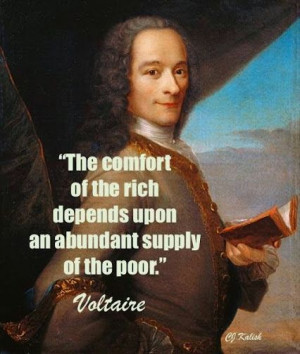 37 Awesome #Voltaire #Quotes to Get Your Brain Thinking