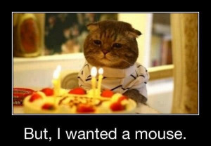 Birthday Cat - Funny pictures