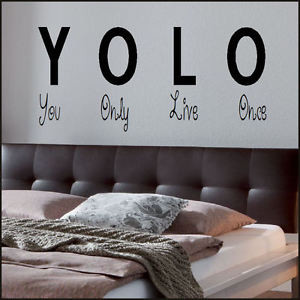 BEDROOM-QUOTE-YOU-ONLY-LIVE-ONCE-YOLO-WALL-ART-STICKER-TRANSFER ...