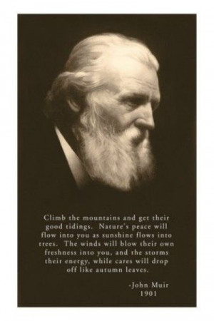 My favorite quote. Love John Muir.