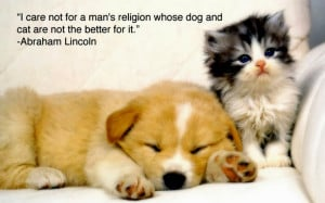 ... Animal Love Pictures , Cute Animal Love Memes , Cute Love Quotes