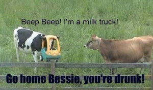 Just a little down home farm humor...