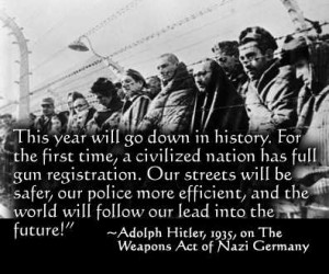 Image copied from Google Images - Hitler Gun Control