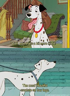 101 Dalmatians quotes, Disney Wisdom