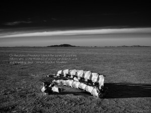 Desert Quotes Wallpaper 1024x768 Desert, Quotes, Bone, Bones