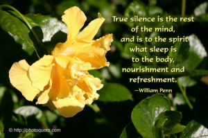 Rest In Peace Quotes And Sayings True silence is the rest of