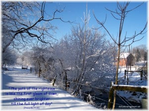 To view this photo in a larger size with a Scripture verse click here ...