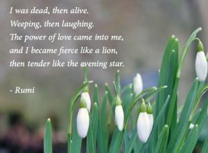 rumi-dead-then-alive-love-snowdrops