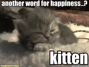 ... Another Word For Happiness! Kitten - Happy Cat Tales: Spread The Word