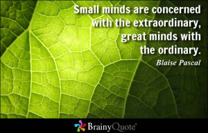 Small minds are concerned with the extraordinary, great minds with the ...
