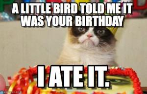 happy birthday from grumpy cat happy birthday grumpy cat meme cactus ...