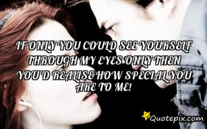 If You Could See Yourself Through My Eyes