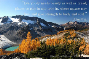 Day 10 - Wilderness Quotes