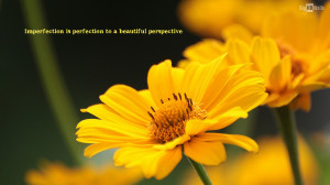 Beautiful yellow flower with an awesome quote. Click on image to ...