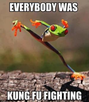 Kung-Fu-Frog