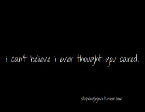You Never Cared Quotes Liar you never cared about