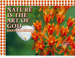 Nature Is The Art of God - Flower Quote