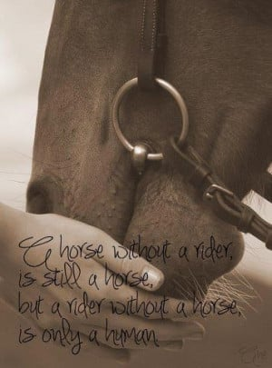 horse without a rider is still a horse,