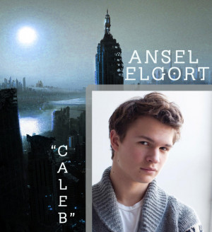 Ansel Elgort Caleb Landed The Role Of Tris Brother picture
