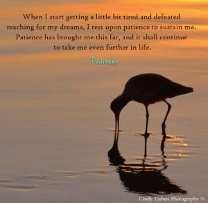 reaching for my dreams, I rest upon patience to sustain me. Patience ...