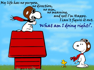 Good Night Snoopy...
